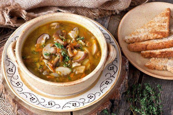 Sopa criolla de hongos y arroz integral